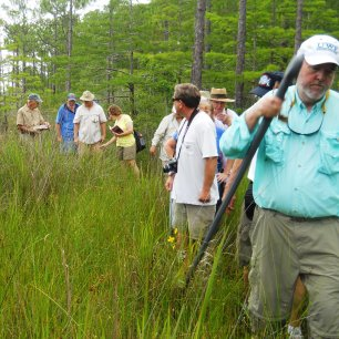 First field trip for the Florida Native Plant Society (pre-construction) in which almost all plants along The Way were identified